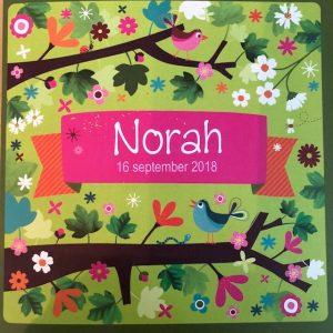 geboortekaart Norah