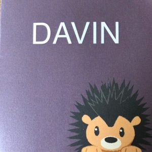 geboortekaart Davin