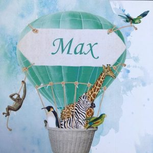 geboortekaart Max