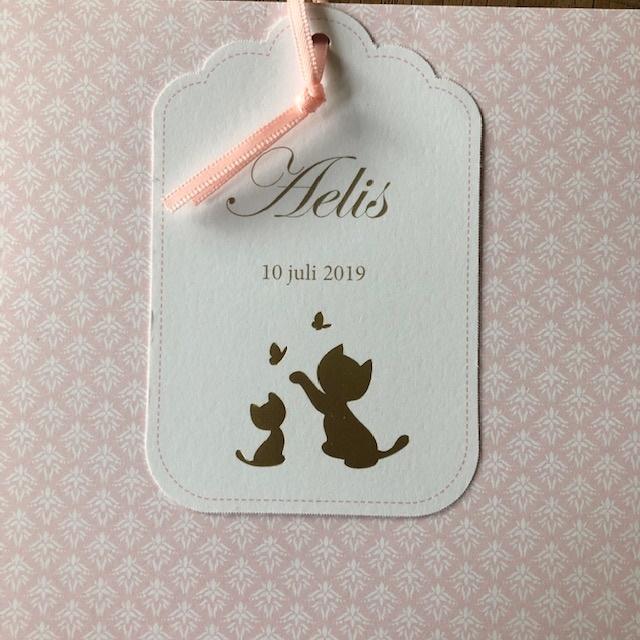 Geboortekaartje Aelis